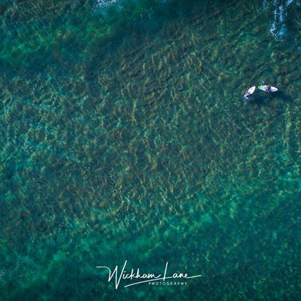 Whale beach surfers