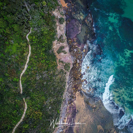 Find your Path - Bilgola